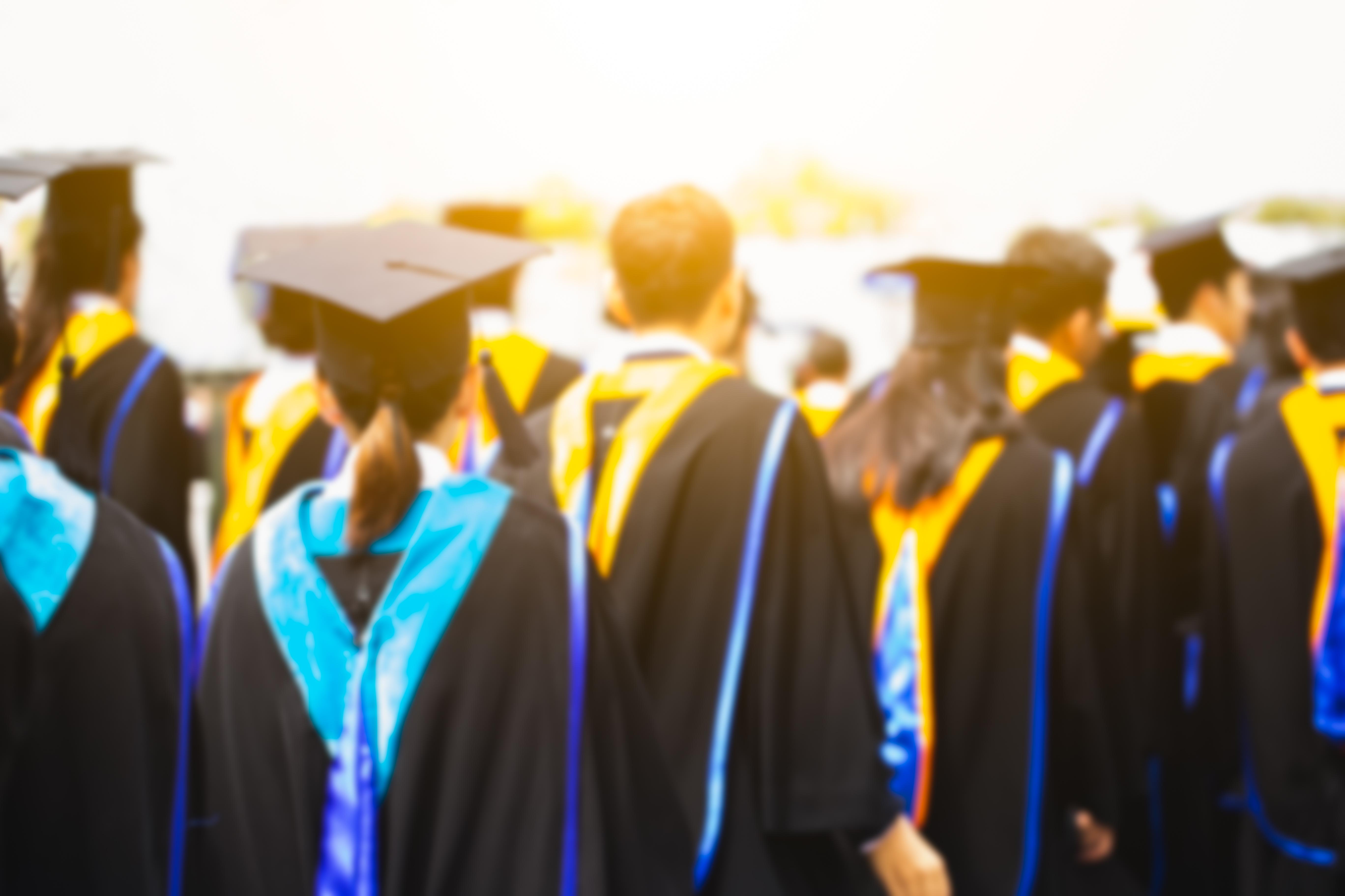 The Average Salary of Teachers Depending on Degree   Career