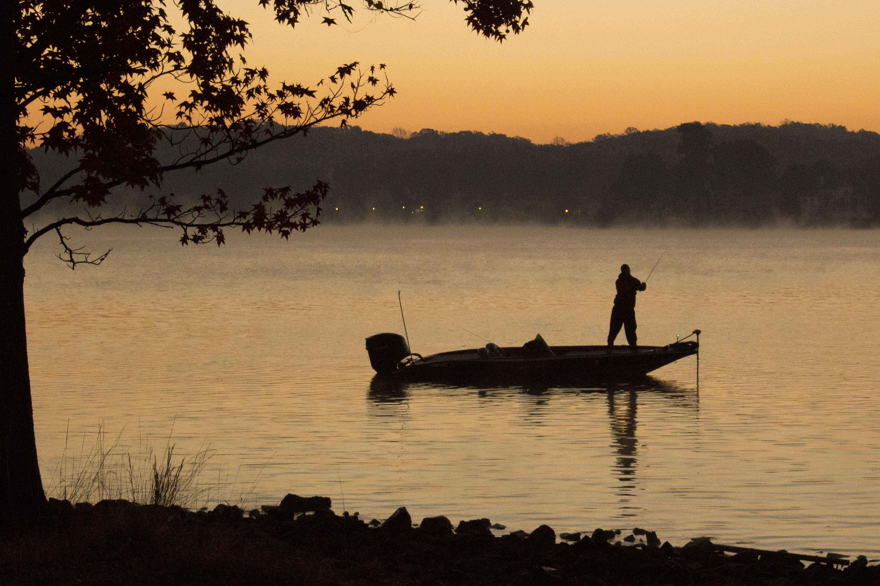 Fishing Spots in Table Rock Lake   USA Today