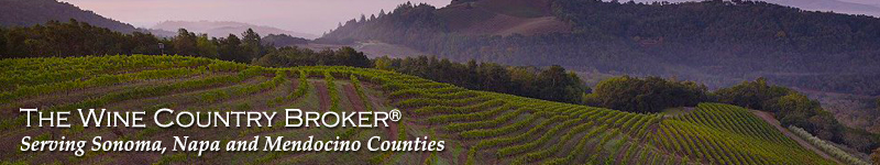 Sonoma, Napa and Mendocino County Real Estate For Sale.   Michael Ronnie, Real Estate Specialist