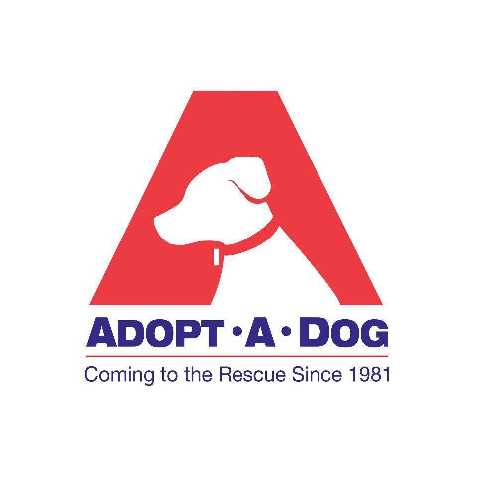 ADOPT A DOG INC's Photo