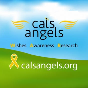 CALS ALL STAR ANGEL FOUNDATION INC's Photo