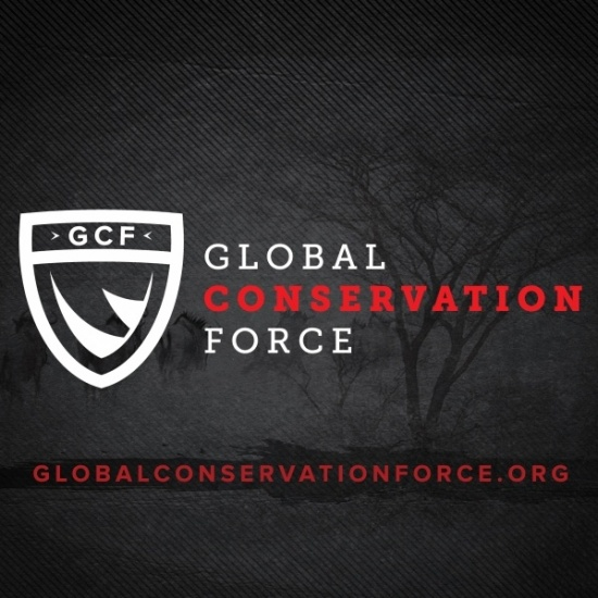 GLOBAL CONSERVATION FORCE INC's Photo