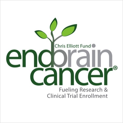End Brain Cancer's Photo