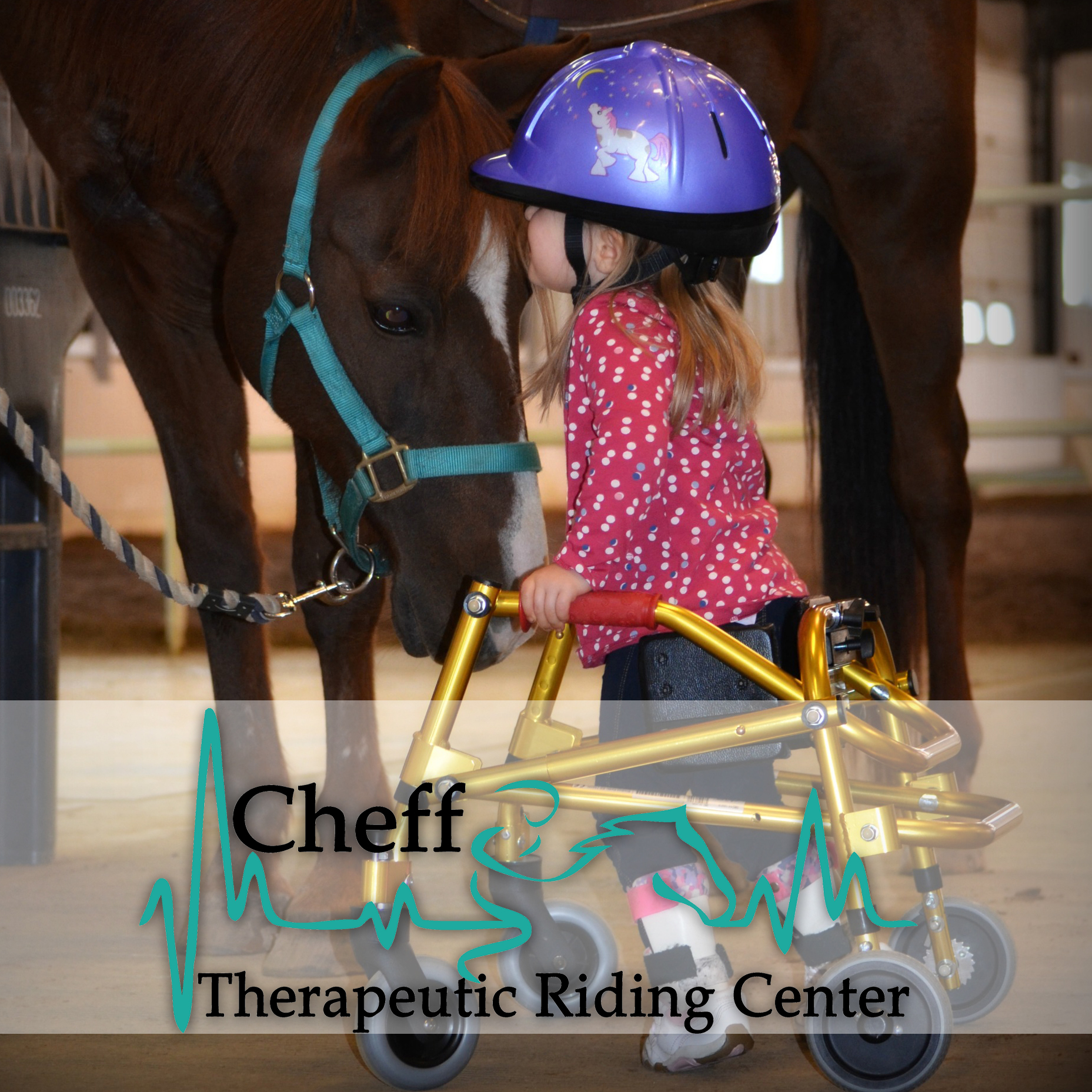 CHEFF THERAPEUTIC RIDING CENTER's Photo