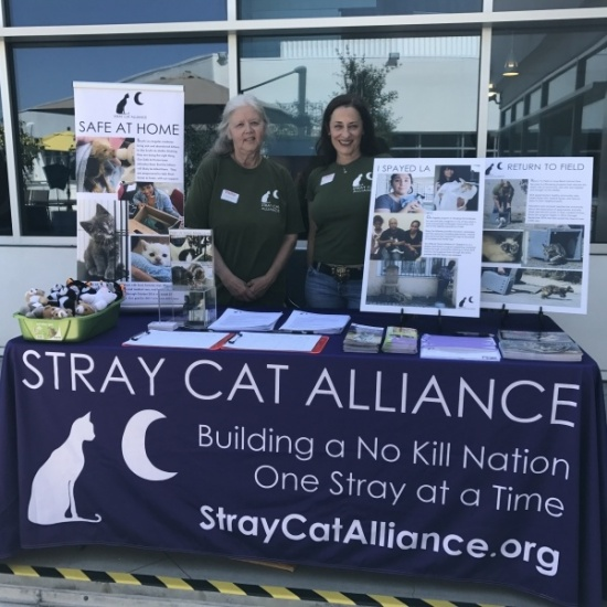 Stray Cat Alliance's Photo