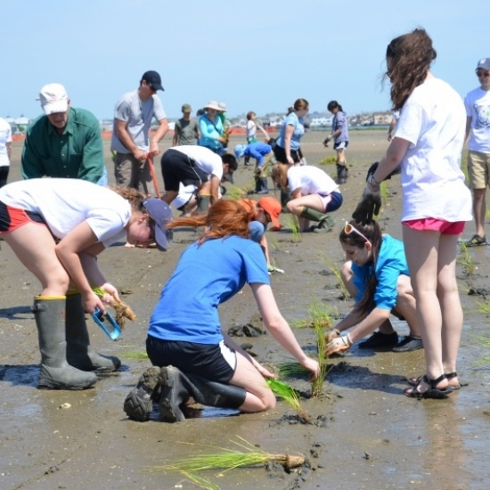 AMERICAN LITTORAL SOCIETY's Photo