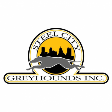STEEL CITY GREYHOUNDS INC's Photo