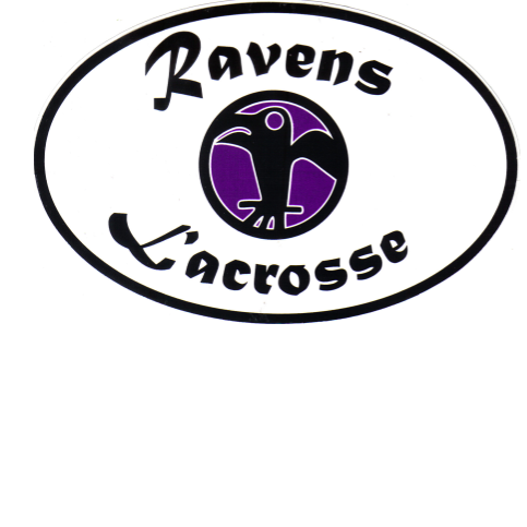 Lacrosse for Love's Photo