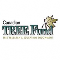 TREE Fund's Photo
