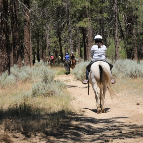HAPPY TRAILS FOR KIDS' Photo