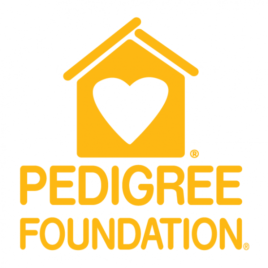 Music City July 4th 5K/10K supporting Pedigree Foundation Photo