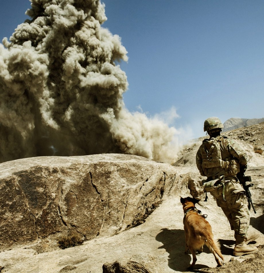 Families on the Frontline War & Service Dog Memorial Photo