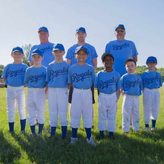 Pitch In For Baseball Photo