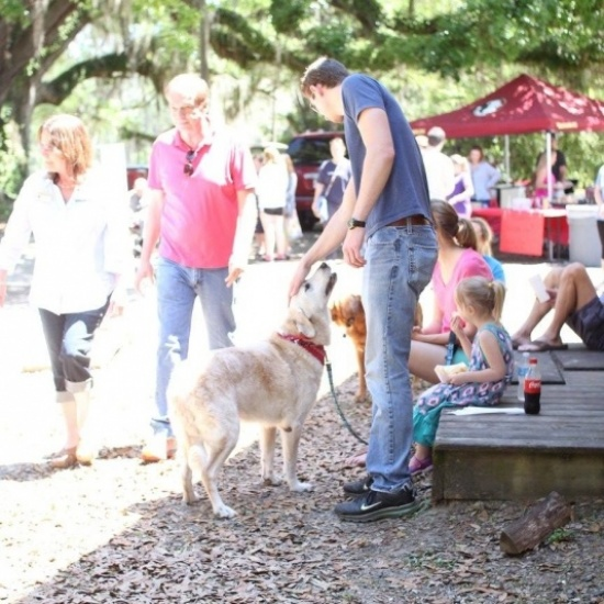 Bags 4 Wags 2017 Photo