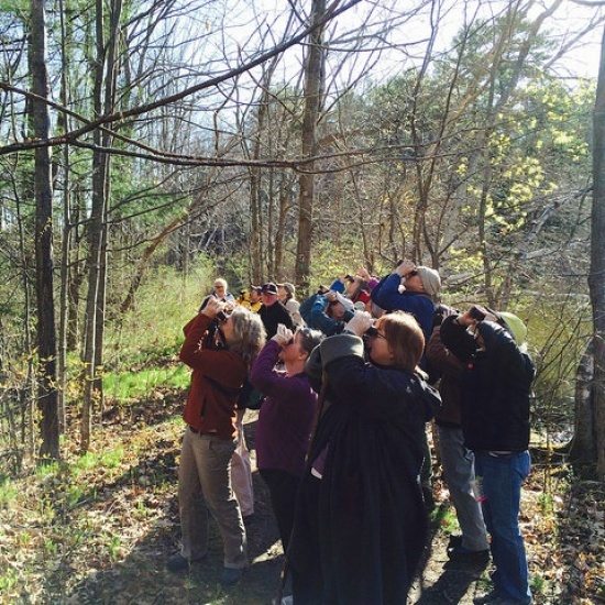 2017 Maine Audubon Birdathon Photo