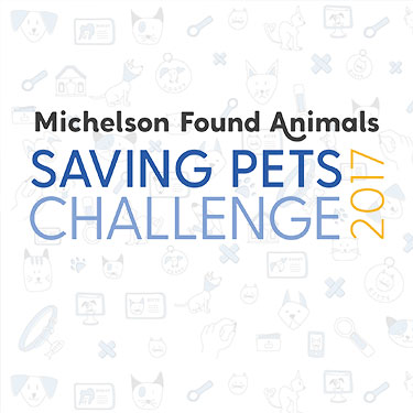 Michelson Found Animals Saving Pets Challenge 2017 Photo