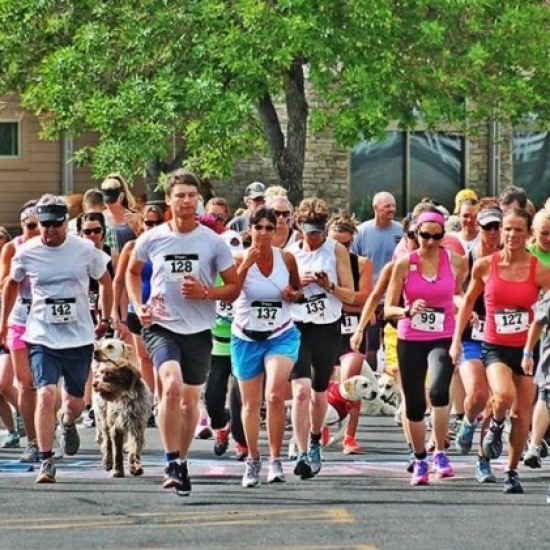 The Fast and the Furriest 5k/1k Photo