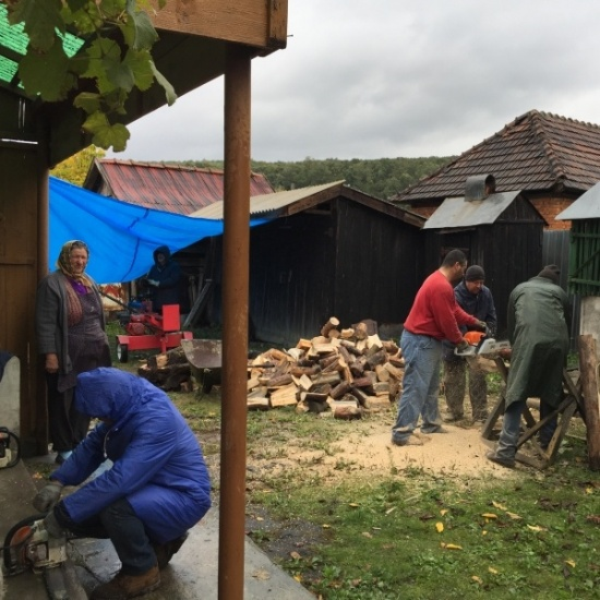 Global Effects - Romania Lumberjack Project Photo