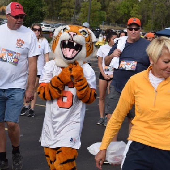 Tiger Prowl 2017 Photo