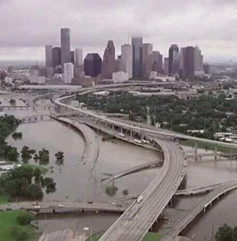 Rescue Houston Photo