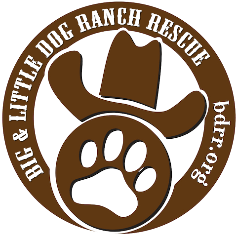 BIG DOG RANCH RESCUE INC's Photo