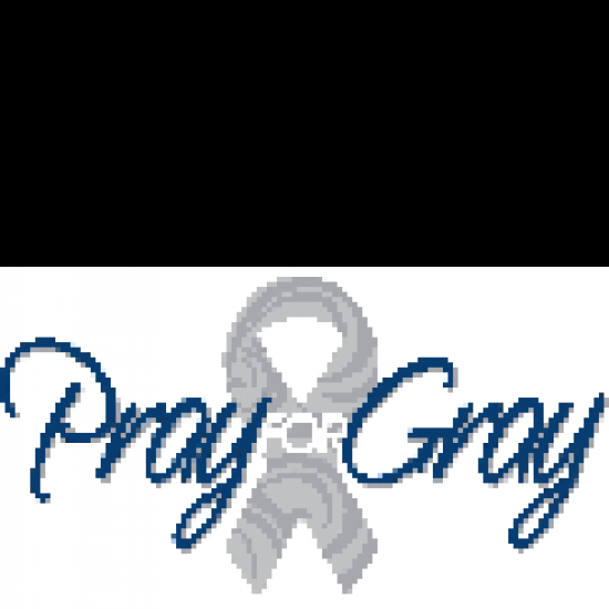 Pray For Gray Foundation's Photo