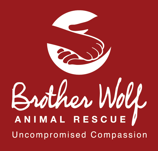 BROTHER WOLF ANIMAL RESCUE INC