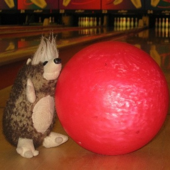 Bowling For Possums