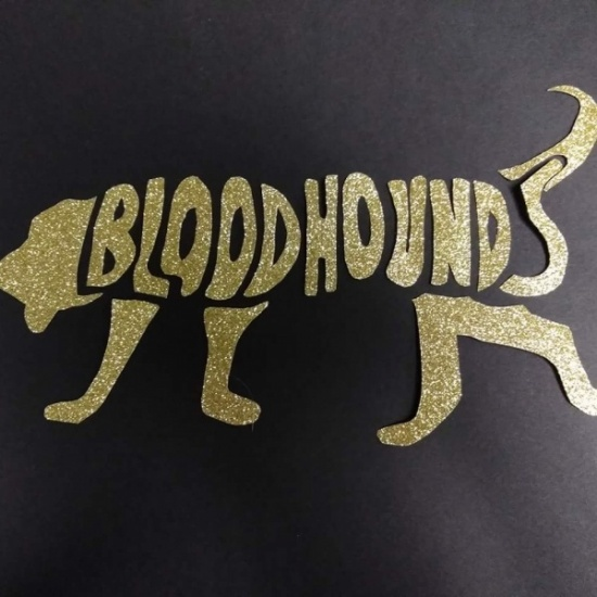 Team Bloodhounds