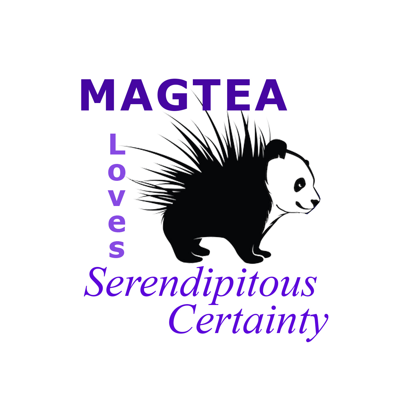 TEAM MAGTEA Loves Serendipitious Certainty GISHWHES