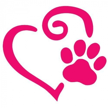 Paws Against Cancer!  Image