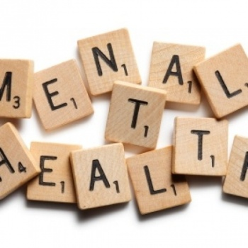 National Alliance for Mental Illness Image