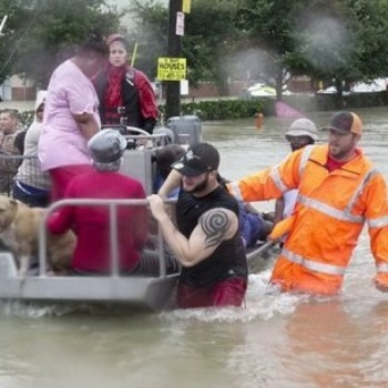 Harvey and Irma relief fund