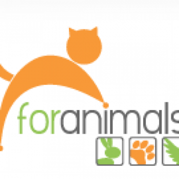 For Animals, Inc. - Help Us Help Them!