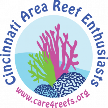 Cincinnati Area Reef Enthusiasts