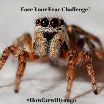 Face Your Fears- Macy's Shop for a Cause