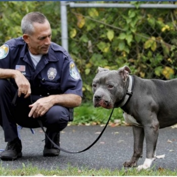 Trishs birthday wish for NB Police for Pups