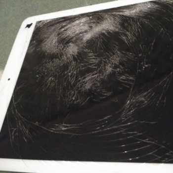 To repair the iPad for new photos