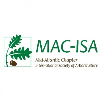 Team MAC-ISA 2017 Image