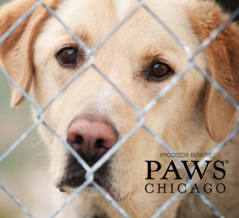 Caring for homeless pets in our community in support of PAWS Chicago