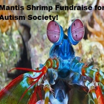 The Mantis Shrimp Fundraiser for the Autism Society