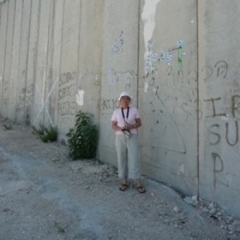 Monitoring Human Rights  In Palestine Image
