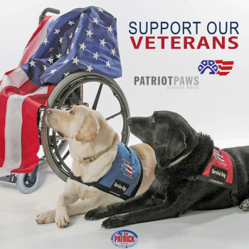 Please Contribute to Patriot PAWS Service Dogs to Help Disabled Veterans Image