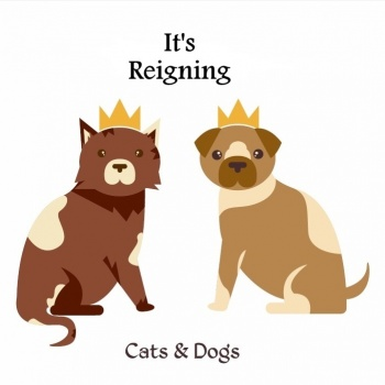 It's Reigning Cats & Dogs