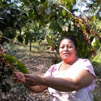 Great Coffee for a Great Cause: Stand with Central Americans and Protect the Environment