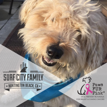 Surf City Family for Paws Fur Pink Image