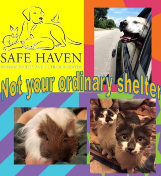 Safe Haven Humane Society and Outreach Center