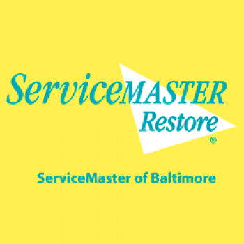 TEAM Service Master of Baltimore Image