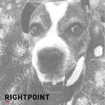 Rightpoint Shorts and Sandals Days - Denver - 2017