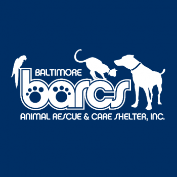 Baltimore Animal Care and Rescue Shelter